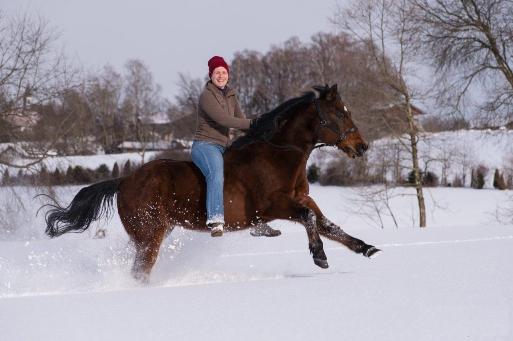 Rider on horse in snow.