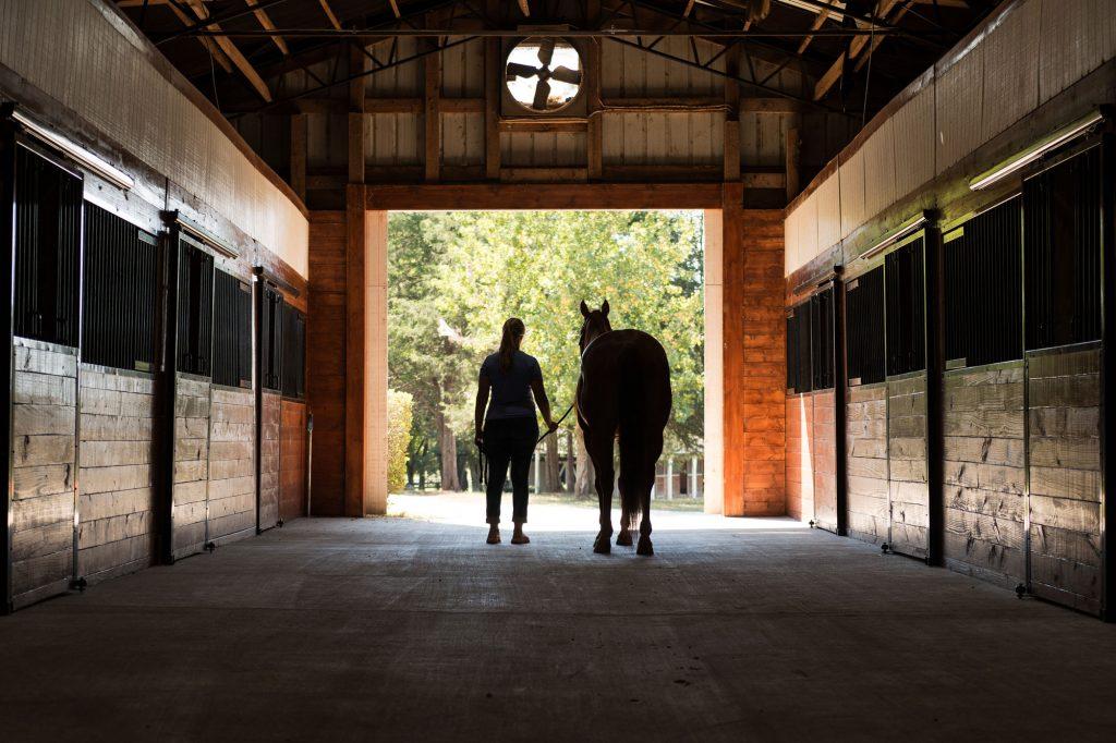 RAMM Horse Stalls