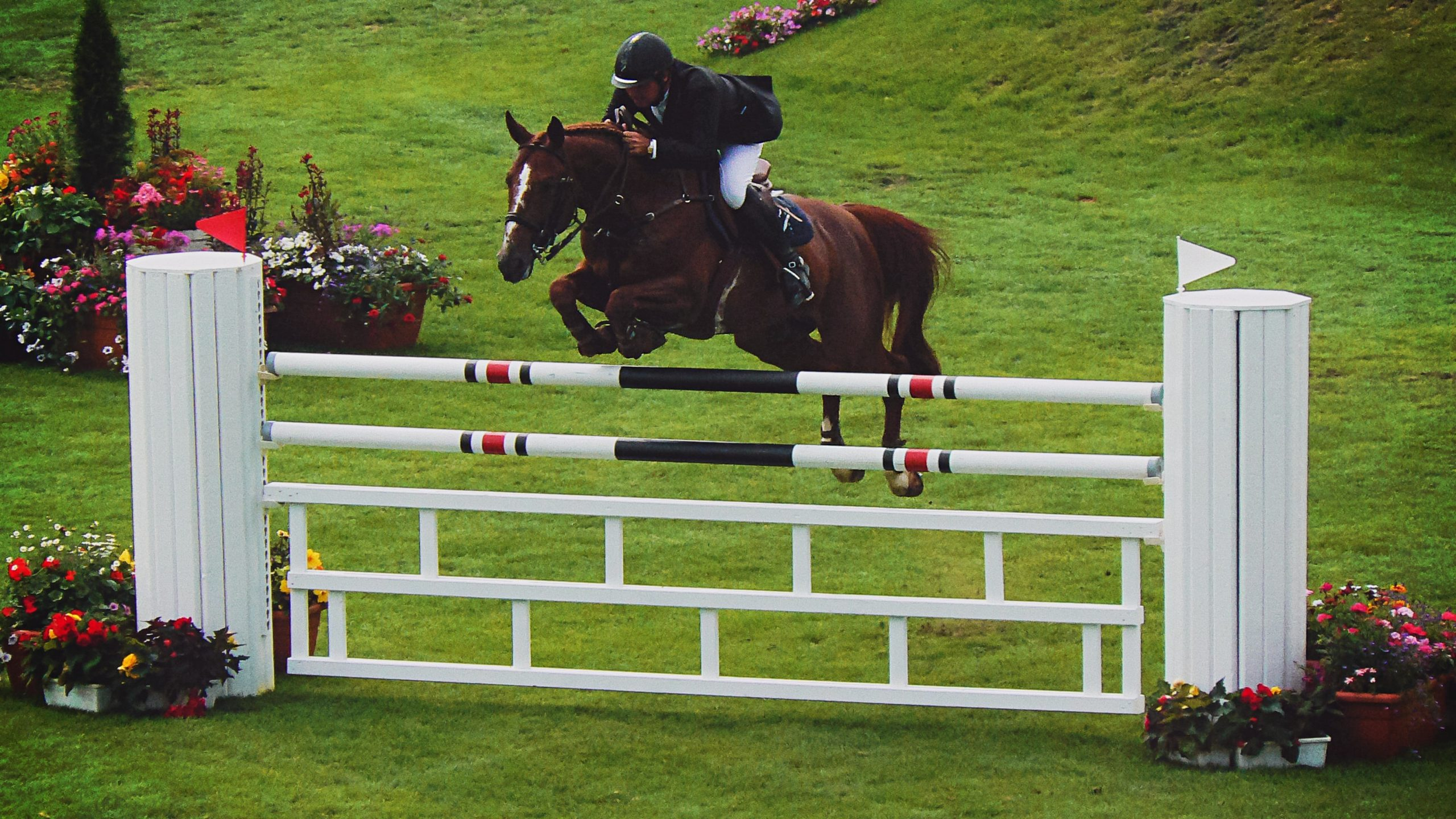 Maryland 5 Star: Show Jumping 2